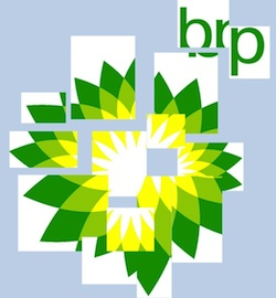bp corporate governance Purpose: to critically examine public and corporate governance failures that we argue predisposed the bp oil spill in the gulf of mexico, the worst environmental disaster in united states (us) history design/methodology/approach: a critical examination of.