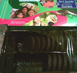 are girl scout cookies evil the business ethics blog